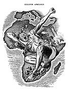 Gulliver Africanus