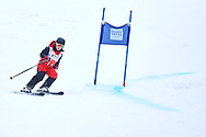 """Schladming, Austria - 2017 March 19: Martina Waelde from Germany (155) competes in Alpine Skiing Competition while Special Olympics World Winter Games Austria 2017 on the """"Sepp-Walcher-Downhill""""<br /> (Slope 32) near the """"Tauernalm"""" in Rohrmoos on March 19, 2017 in Schladming, Austria.<br /> <br /> Mandatory credit:<br /> Photo by © Adam Nurkiewicz / Mediasport<br /> <br /> Adam Nurkiewicz declares that he has no rights to the image of people at the photographs of his authorship.<br /> <br /> Picture also available in RAW (NEF) or TIFF format on special request.<br /> <br /> Any editorial, commercial or promotional use requires written permission from the author of image.<br /> <br /> Image can be used in the press when the method of use and the signature does not hurt people on the picture."""