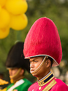 03 DECEMBER 2015 - BANGKOK, THAILAND:  Thai soldiers stand at attention before swearing allegiance to the King during the annual Trooping of the Colors parade at Sanam Luang in Bangkok. The Thai Royal Guards Parade, also known as Trooping of the Colors, occurs every December before the celebration of the birthday of Bhumibol Adulyadej, the King of Thailand. The Royal Guards of the Royal Thai Armed Forces perform a military parade and pledge loyalty to the monarch. Historically, the venue has been the Royal Plaza in front of the Dusit Palace and the Ananta Samakhom Throne Hall. This year it was held on Sanam Luang in front of the Grand Palace.   PHOTO BY JACK KURTZ