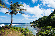 East Coast of Tutuila island, American Samoa, South Pacific