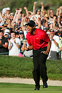Tiger Woods celebrates making the putt on the 18th to make the playoff on the 4th day at the USGA Open Championship 2008, Torrey Pines (South ) GC, San Diego, California, USA.  14 / 06 /  2008.<br /> Photo Credit:  Mark Newcombe / www.visionsingolf.com