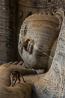 Reclining Buddha, Gal Vihara, Ruins of ancient city, Polonnaruwa, Sri Lanka.
