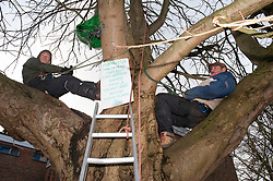 © Licensed to London News Pictures. 29/11/2018. Tonbridge, UK. Local resident protesters in Tonbridge, Kent have been sitting up a tree for a week to stop it being chopped down to make way for a new medical Centre in River Lawn Road. Developers say the horse chestnut tree is dying anyway but the local group want it saved.Photo credit: Grant Falvey/LNP