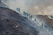 June 22, 2017<br /> A helicopter works its way back to collect water to drop on the Hunter Creek Fire, which is burning just west of downtown Reno, Nevada, on Thursday, June 22, 2017. According to a Truckee Meadows Fire representative, the cause of the fire is not known, but the point of origin is known. The blaze is estimated at 250 acres and is approximately 35% contained and is burning on U.S. Forest Service land. No structures have been damaged. One firefighter suffered a minor heat-related injury. At least eight agencies are battling the fire. Washoe County park and trail access is unavailable until investigation and operations are complete.