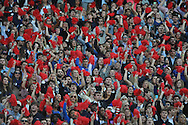 Students cheer at Ole Miss vs. Tennessee at Vaught-Hemingway Stadium in Oxford, Miss. on Saturday, October 18, 2014.