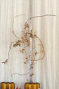 dried twigs decoration above a Hinamatsuri dolls display