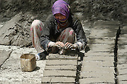 India, Ladakh region state of Jammu and Kashmir, Shey, Woman making mud blocks