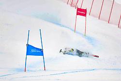 Super Combined and Super G, PENDERGAST Victoria, LW12-1, AUS at the WPAS_2019 Alpine Skiing World Championships, Kranjska Gora, Slovenia