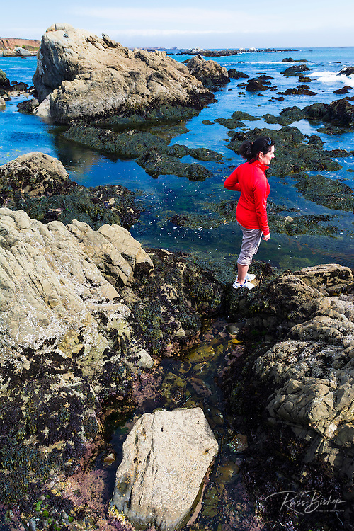 Woman exploring the tide pools at Estero Bluffs State Park, Cayucos, California USA