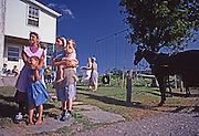 "Conservative ""Horse and Buggy"" Mennonite women and children watch barnraising."