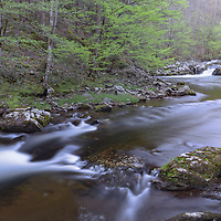 River cascades in the Tremont District of the Great Smoky Mountain National Park.