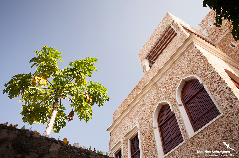 The stunning architecture of Lamu Town, Kenya.