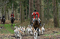 Fox Hunting.Hampshire, Stratfield , England, February 9th, 2005 Vale of Aylesbury with Garth and south hunt , joint Master Drawing (blowing the hunting horn) to get hounds attention to follow him.