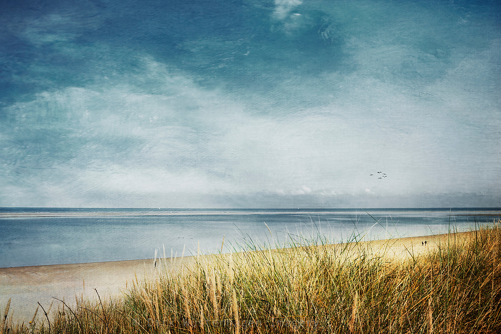 View from a dune to the North Sea beach of the island Spiekeroog / Germany - textured photogrph