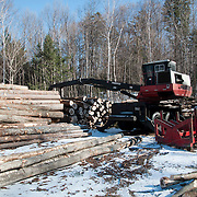 A small logging operation in the White Mountain National Forest, New Hampshire. Winter doesn't stop the harvesting of lumber on public land.