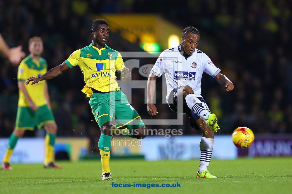 Neil Danns of Bolton Wanderers  and Alexander Tettey of Norwich City during the Sky Bet Championship match at Carrow Road, Norwich<br /> Picture by Richard Calver/Focus Images Ltd +447792 981244<br /> 31/10/2014