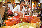 "Apr. 22 - UBUD, BALI, INDONESIA:  A woman prepares a suckling pig after an Odalan ceremony in a family temple in Ubud, Bali, Indonesia. The Odalan ceremony is the ""birthday"" ceremony for Hindu temples in Bali and are held every 210 days. They are common in Bali. Hindus in Bali are not vegetarians.   Photo by Jack Kurtz/ZUMA Press."