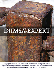 DIIMSA-EXPERT (Knowledge base, Questions, Vocabulary, Concepts, Video Clips)