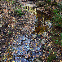 Waxhaw Creek 10 23 2014