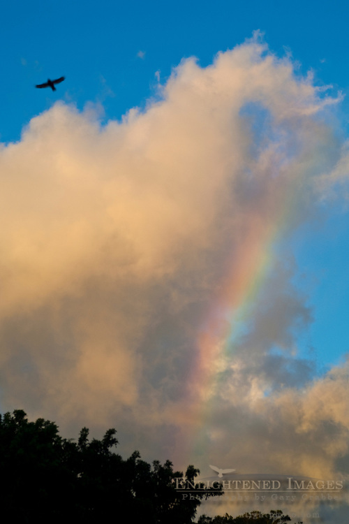 Rainbow and clouds at Waialua Bay, North Shore, Oahu, Hawaii
