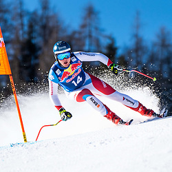 Niels Hintermann of Switzerland at the Ski Alpin: 80. Hahnenkamm Race 2020 - Audi FIS Alpine Ski World Cup - Men's Downhill Training at the Streif on January 22, 2020 in Kitzbuehel, AUSTRIA. (Photo by Horst Ettensberger/ESPA/CSM/Sipa USA) - Kitzbuhel (Autriche)