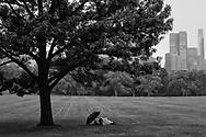 Central Park's Sheep Meadow on a lazy rainy afternoon.