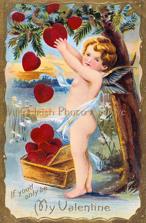 If You'd Only Be My Valentine', 1910. Cupid is gathering a basket of red hearts from a Pine tree which, in the language of flowers represents Daring.  In Roman mythology Cupid was the son of Venus, goddess of love (Eros and Aphrodite in the Greek Pantheon).  The identity of St Valentine is uncertain, the most popular candidates are Valentine, bishop of Terni (3rd century) or a Roman Christian convert martyred c270).  St Valentine's Day, celebrated on 14 February, probably replaces the Roman pagan festival of Lupercalia.
