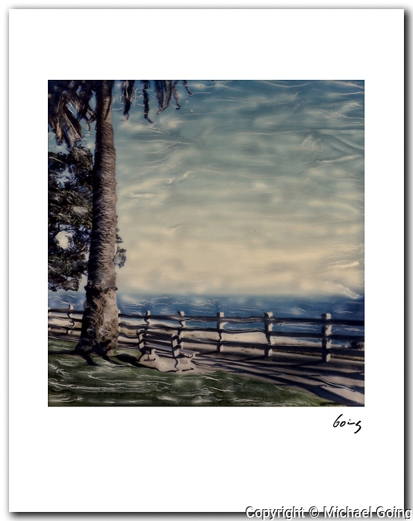 Palisades Park, Santa Monica 1989 signed 11x14 archival pigment print. Free delivery USA