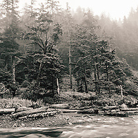 Oswald West State Park, Oregon, during an intense fall storm.<br />