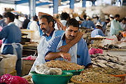 Deira. Shindagha Market. Fish Souq. Shrimps.