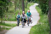 Bij Soest rijdt een familie op de fiets langs de Soesterduinen.<br /> <br /> Near Soest a family is cycling at the Soesterduinen.