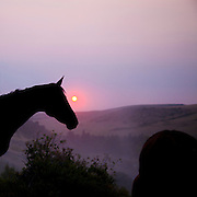 Smoky Morning, Eatons Ranch, Wolf, Wyoming