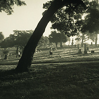 older bent man in cemetery