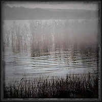 Mist above water on a lake