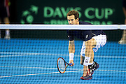 Andy Murray of Great Britain at the net during the 2016 Davis Cup Semi Final between Great Britain and Argentina at the Emirates Arena, Glasgow, United Kingdom on 17 September 2016. Photo by Craig Doyle.