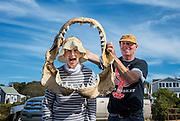 Woman poses with jaw bone of a great white shark, menemsha, Martha's Vineyard, Massachusetts, USA