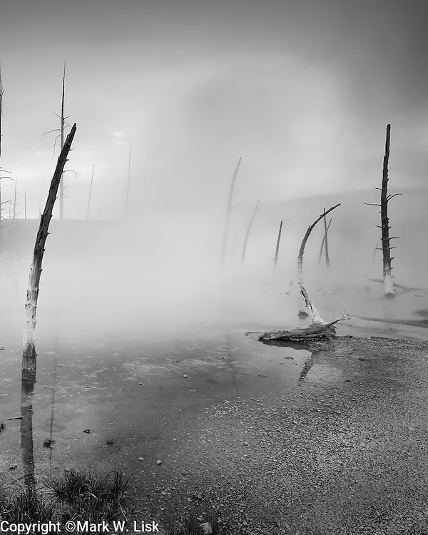 Fog rises from a steaming geyser basin in Yellow Stone National Park, Montana/ Wyoming.