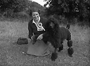 04/08/1952 <br /> 08/04/1952<br /> 04 August 1952  <br /> Dog Show, 18th Annual Green Stan Championship at Monkstown, Co. Dublin. Miss Joanna Hayes , Abbeyville House, Goom, Co. Limerick with her Best of Breed winning poodle &quot;Vulcan Champagne Blast&quot;.