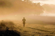 UNITED KINGDOM, London: 08 October 2015 A jogger runs through the morning mist of Richmond Park during an autumnal sunrise this morning. Photo: Rick Findler / Story Picture Agency