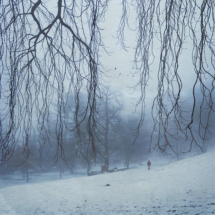 Parklandschaft im Winter<br /> Licenses:<br /> http://www.westend61.de/koala2/imgsearch.html?number=DWI000288&amp;mode=pv