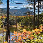 Bretton Woods, AMC Crawford Notch, Ammonoosuc Lake