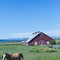 Eastern Oregon ranch near Summerville, Oregon