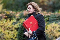 © Licensed to London News Pictures. 14/11/2017. London, UK. Secretary of State for International Development Penny Mordaunt arrives on Downing Street for the weekly Cabinet meeting. Photo credit: Rob Pinney/LNP