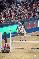 Bevis Robert, GBR, Pebbles IV<br />  The Shelley Ashman International Ltd, EM Rogers (Transport) Ltd Father Christmas Stakes<br /> Olympia Horse Show -London 2016<br /> © Hippo Foto - Jon Stroud<br /> 17/12/16