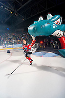KELOWNA, CANADA - SEPTEMBER 21:  Joe Gatenby #28 of the Kelowna Rockets enters the ice during the regular season home opener against the Kamloops Blazers at the Kelowna Rockets on September 21, 2013 at Prospera Place in Kelowna, British Columbia, Canada (Photo by Marissa Baecker/Shoot the Breeze) *** Local Caption ***