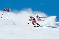GORCE YEPES Gabriel Juan Guide FERRER VENTURA JA, ESP, Downhill, 2013 IPC Alpine Skiing World Championships, La Molina, Spain