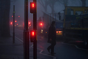 Despite a red light, a pedestrian walks out into commuter traffic at dawn on a foggy morning in south London.