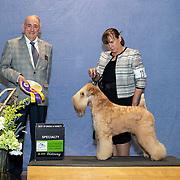 Great Western Terrier 02/28/2020