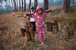 While Ko Aung Mgo works in the tree tops, the older children help by carrying the bamboo containers full of sap. At Ka Myaw Gyi village in the outskirts of Dawei, Myanmar.