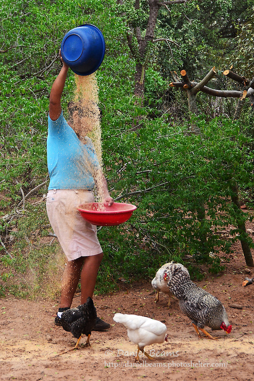 Guarani woman threshing rice in Isosog